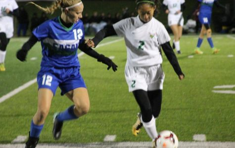 Girls Varsity Soccer takes on Wayzata in State Semifinals