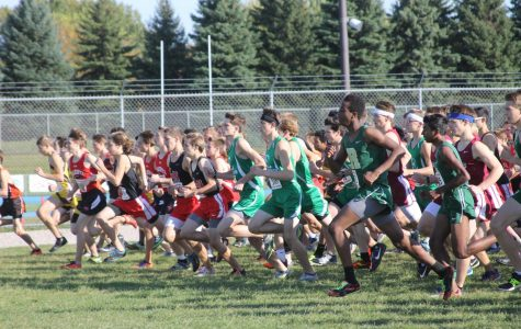 Eagan Cross Country takes on Sections